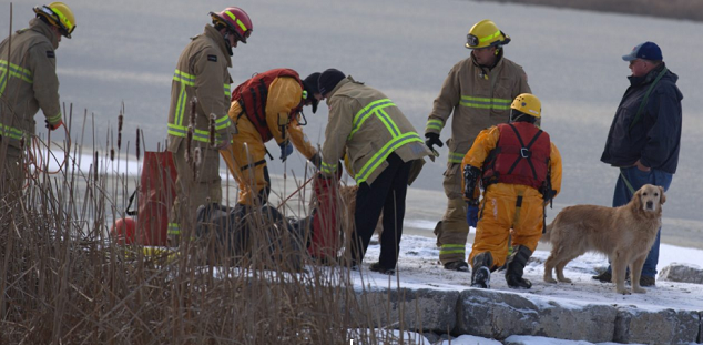 Oshawa fire crews rescue dog in icy waters